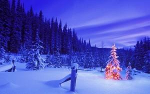 Merry-Christmas-christmas-32939522-1280-800